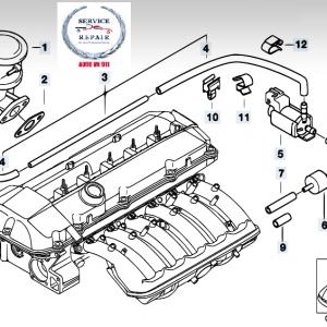 Bơm chân không BMW 525i (M54)